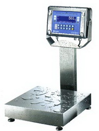 Digital Industrial Scales